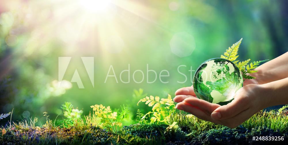 AdobeStock_248839256_Preview